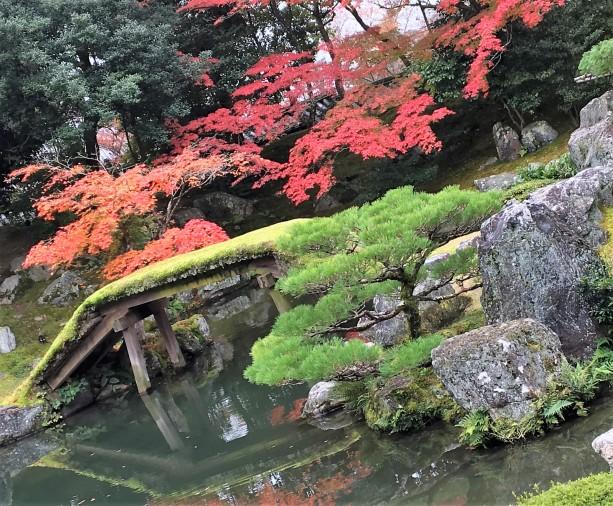 sanboin-garden-spot-view