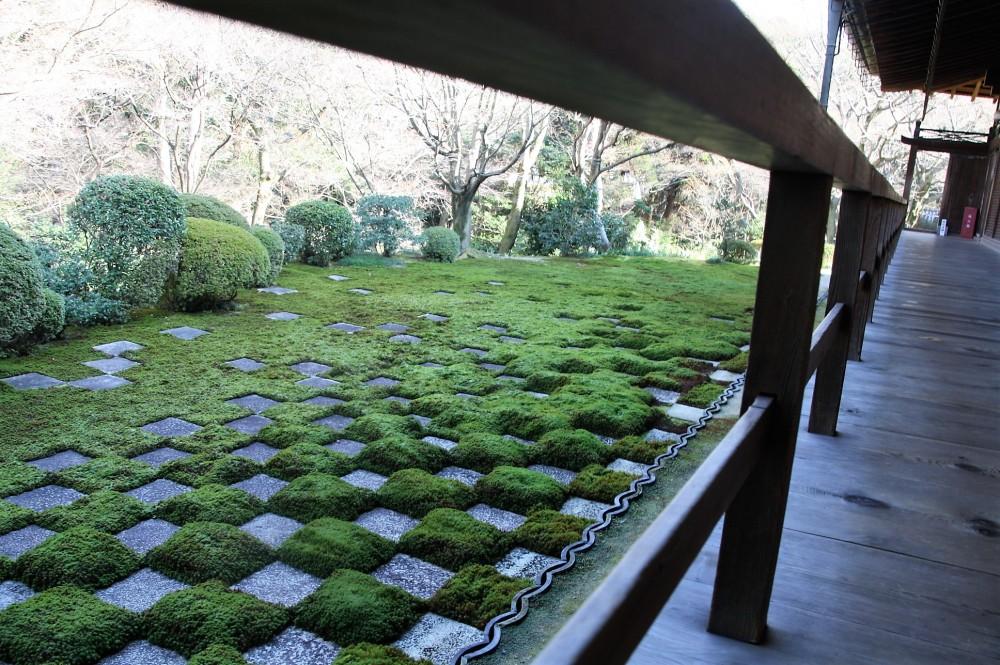 northern-garden-2
